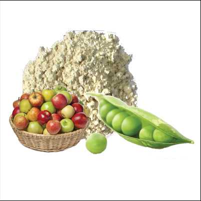 Pea Protein Apple