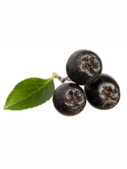 Aronia Berries Dried