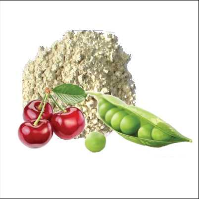 Pea-Protein-with-cherry